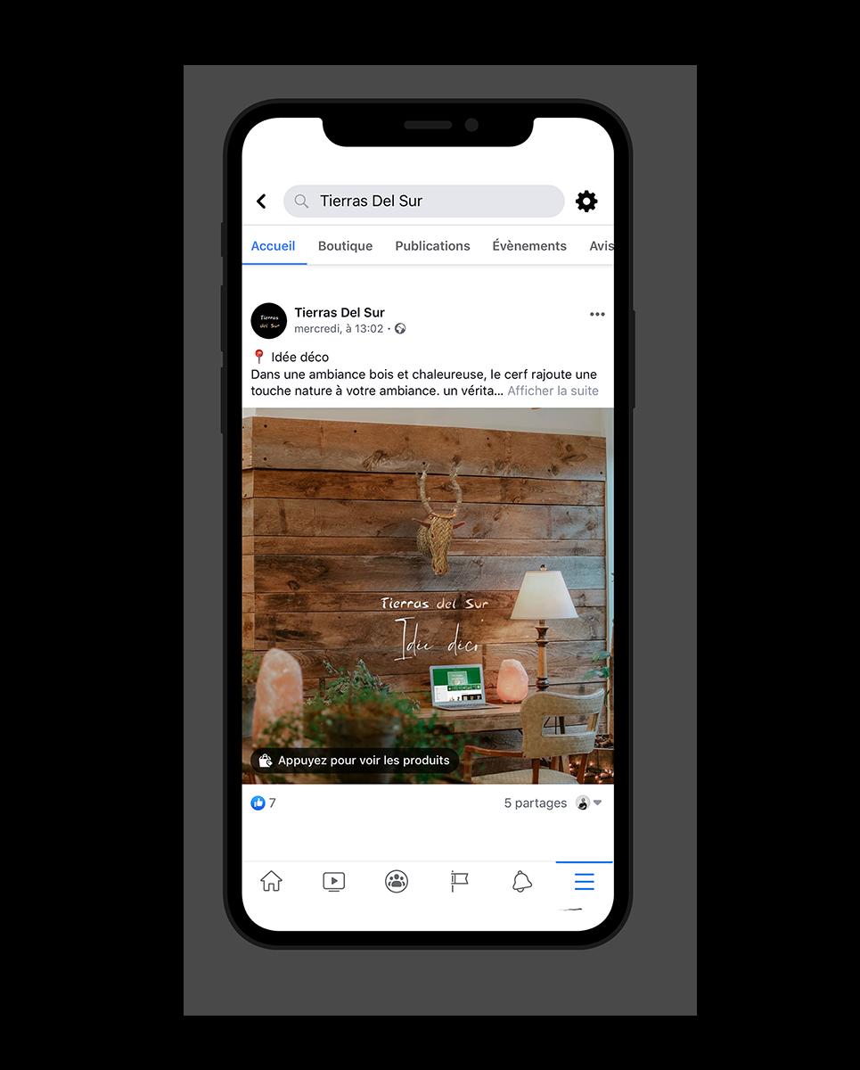 Facebook ACVIS client