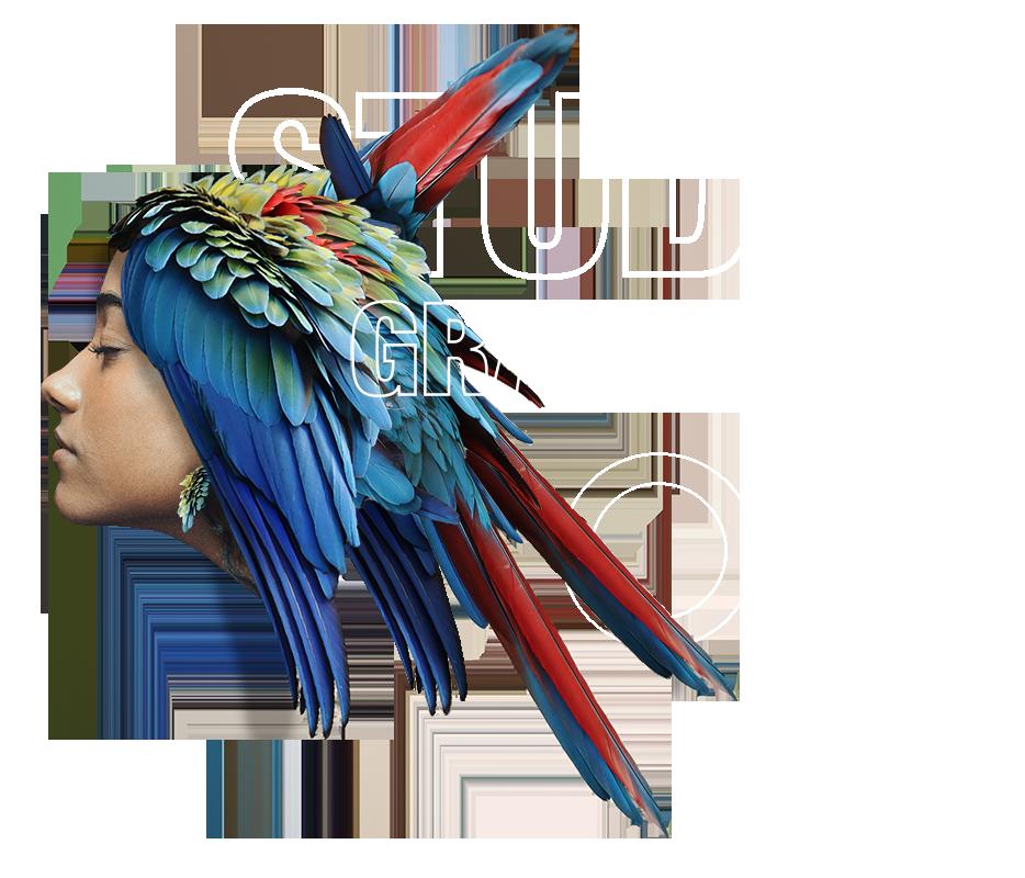 Studio Graphique ACVIS